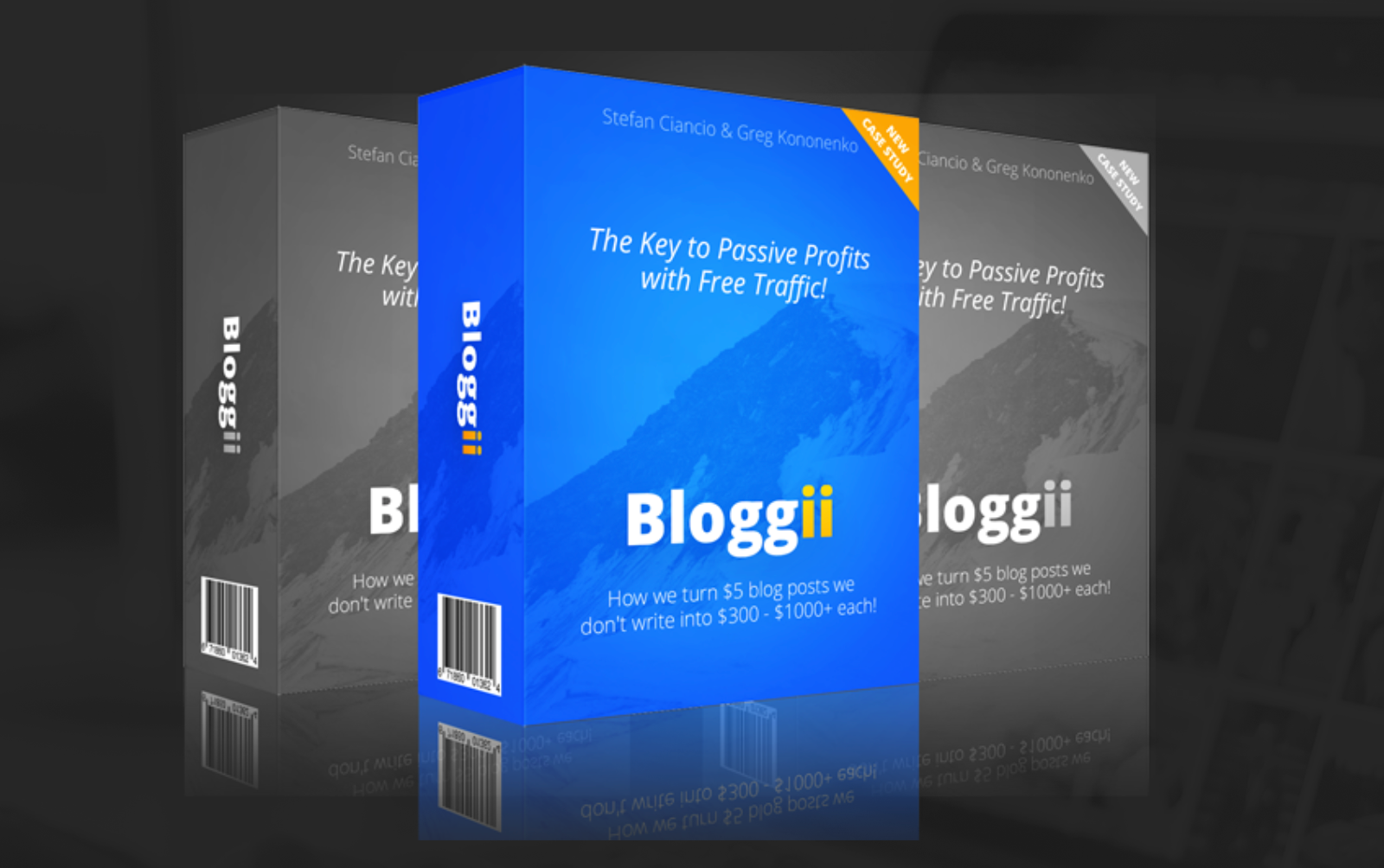 bloggii review 3